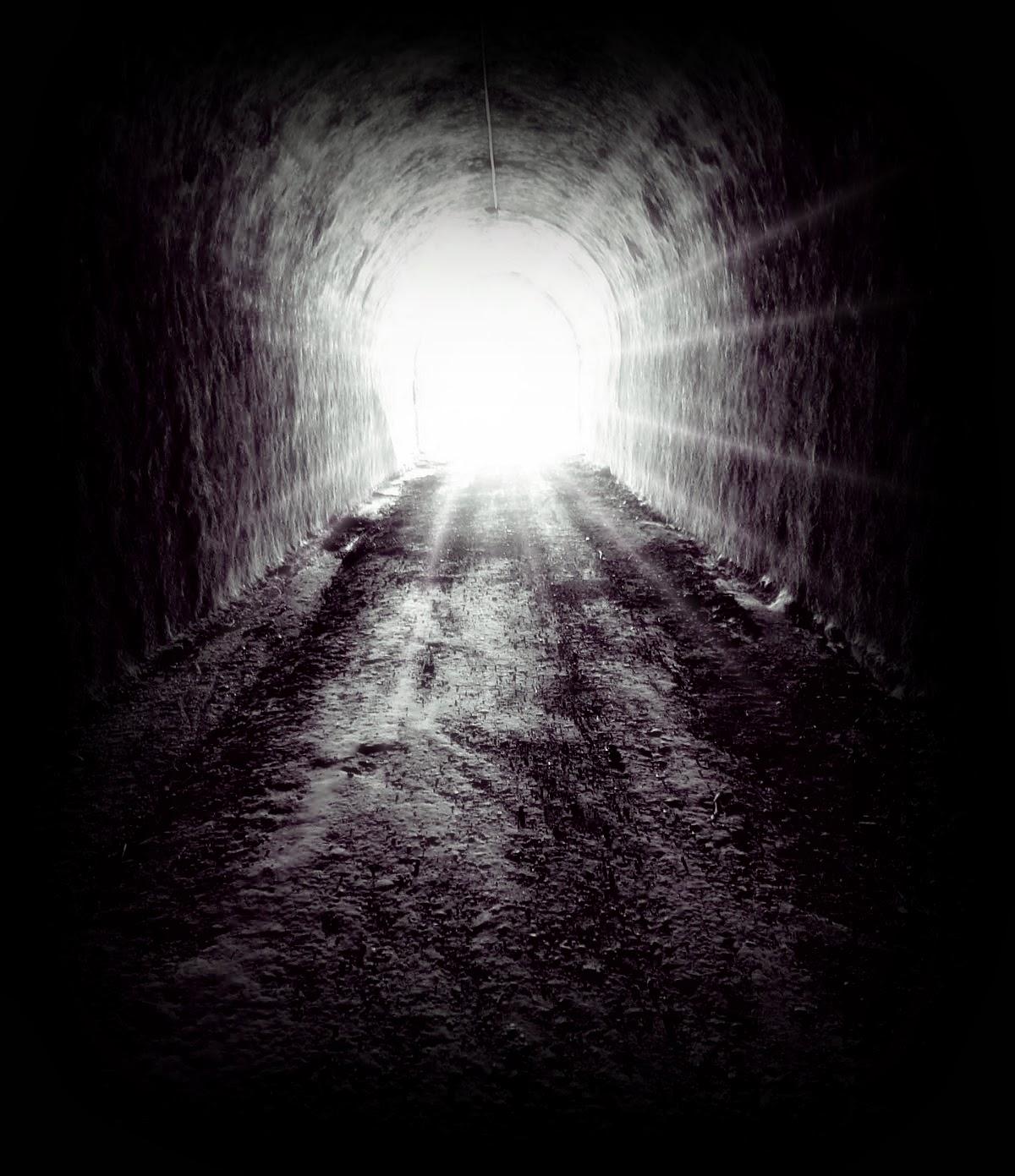 Lei_geral_sobre_concursos_públicos_uma_luz_no_fim_do_túnel