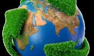 Concurso Ministério do Meio Ambiente: Oferta de 100 vagas para agente administrativo (nível médio)! Inicial de R$ 3.627,72!