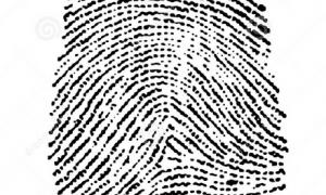 Concurso Polícia Civil do DF – Papiloscopista: Saíram os gabaritos preliminares! Recursos a partir desta terça, 26!