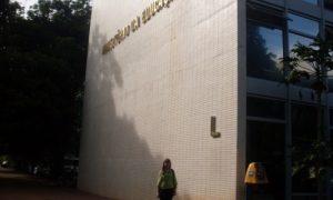 Ministério da Educação (MEC): Autorizadas 321 vagas para temporários! Oferta para níveis médio e superior!