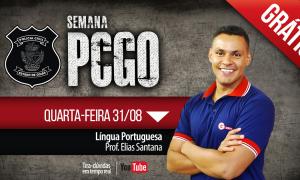 AO VIVO AGORA – Língua Portuguesa para PC-GO com Elias Santana
