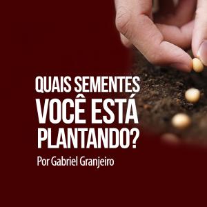 Que sementes você está plantando?