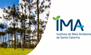 Concurso IMA SC: último dia de inscrição! Até R$ 6,4 mil!