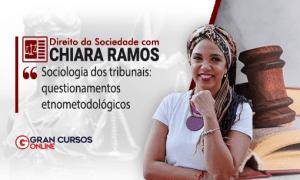 Direito da sociedade: sociologia dos tribunais: questionamentos etnometodológicos