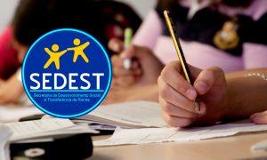 Concurso Sedest DF: 42,9% dos aprovados estudaram com o GRAN!