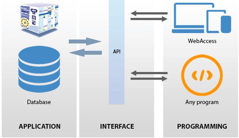 Figura 1: esquema do uso de uma API.