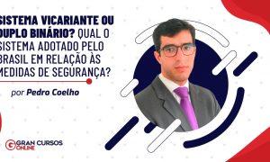 Sistema vicariante ou duplo binário? Qual o sistema adotado pelo Brasil em relação às medidas de segurança?