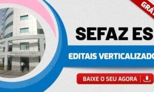 Concurso Sefaz ES: baixe AQUI o edital verticalizado