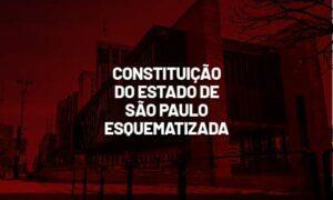 Constituição do Estado de São Paulo esquematizada. Confira!