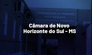Concurso Câmara Novo Horizonte do Sul MS: saiu edital de nível superior. VEJA!