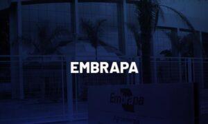 Concurso Embrapa: Senador pede novo edital. Entenda!